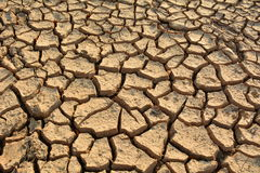 Desolate land or dry areas, no hopes and despair Stock Photography