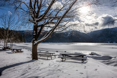 Desolate park by lake in winter. Royalty Free Stock Image