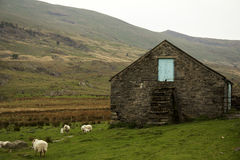 Desolate. Stone building in the middle of nowhere, near Capel Curig, North Wales royalty free stock photo