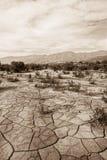 Desolate Wildnis lizenzfreie stockfotos