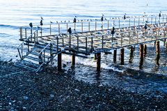 Desolated Dock With Seagulls And Calm Sea. A desolated metal constructed dock that used to served as an open air coffee and tea house on top of the sea nearby stock photography
