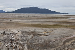 Desolated landscape with ashes after volcano eruption in Chaiten. Chile Royalty Free Stock Images