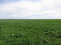 Desolated meadow with cloudy sky. A desolated green meadow with a cloudy sky in the summer stock photography