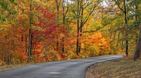 DeSoto国家公园的秋天颜色 免版税图库摄影