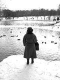 Despair, loneliness, solitude, desolation, aloneness. Lonely woman at the pond to feed the ducks and looking into the distance thinking about passing stands with stock photo