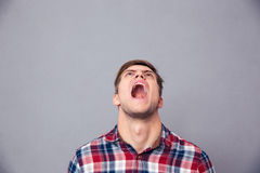 Despaired angry man in plaid shirt looking up and screaming Royalty Free Stock Photo