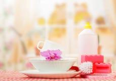 Despedregadora de la cocina de la higiene Fotografía de archivo