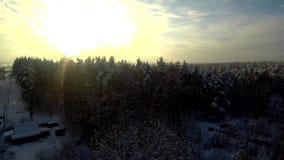 Despegue para arriba en el aire Paisaje de la visión aérea en bosque del invierno en la puesta del sol Río congelado en fondo almacen de video