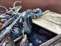 Despejo ilegal, lixo em um contentor recolhido durante uma limpeza do rio Imagens de Stock