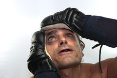 Desperate boxer Stock Images