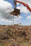 Desperdício de madeira que está sendo carregado Imagens de Stock Royalty Free