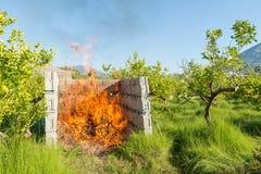 Desperdício de poda ardente Fotos de Stock Royalty Free