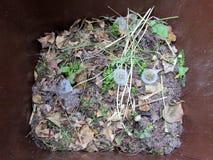 Desperdício do jardim em um escaninho marrom fotos de stock royalty free