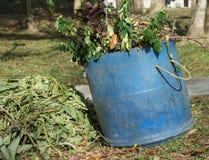 Desperdício do jardim para o adubo Fotografia de Stock Royalty Free