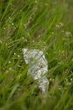 Desperdício na terra na natureza, poluição ambiental fotografia de stock