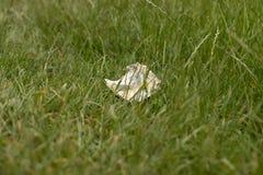 Desperdício na terra na natureza, poluição ambiental imagens de stock