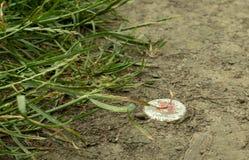 Desperdício na terra na natureza, poluição ambiental fotos de stock royalty free