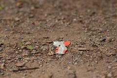 Desperdício na terra na natureza, poluição ambiental fotografia de stock royalty free