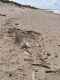 Desperdícios na praia Foto de Stock Royalty Free