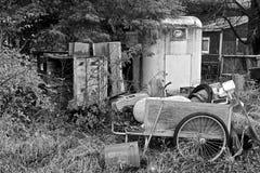 Desperdicios diversos fuera de un hogar demasiado grande para su edad con las plantas foto de archivo libre de regalías