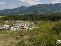Desperdicios en la hierba verde Fotos de archivo libres de regalías