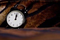 Despertador Foto de Stock