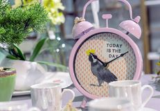 Despertador clássico cor-de-rosa com uma imagem e uma inscrição fotos de stock royalty free