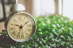 Despertador del vintage con Roman Numeral en la hierba Fotos de archivo