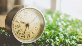 Despertador del vintage con Roman Numeral en la hierba Imagenes de archivo