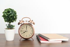Despertador en la tabla de madera con el florero del árbol Imágenes de archivo libres de regalías