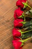 Despesas gerais da fileira das rosas Imagens de Stock