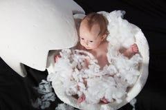 Despesas gerais do bebê recém-nascido no ovo chocado imagem de stock