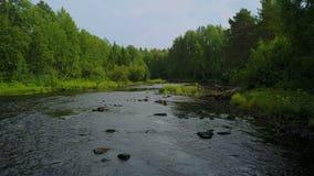 Desplazamiento aéreo por el río del bosque en Karelia, Rusia metrajes