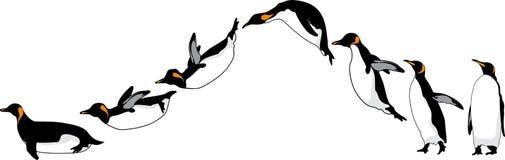 Desplazamiento de pingüinos Fotos de archivo libres de regalías