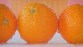Desplazamiento a lo largo de las naranjas adonde el agua está rociando sobre ellas almacen de video