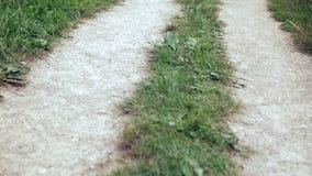 Desplazamiento sobre el camino y la hierba de la grava metrajes