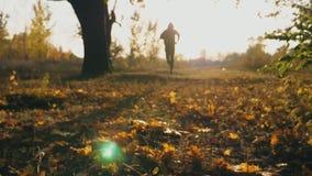 Desportista irreconhecível na capa que corre no parque do outono que pisa nas folhas caídas cor Treinamento masculino do atleta e video estoque
