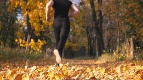 Desportista irreconhecível que corre no parque do outono que pisa nas folhas de bordo secas Corredor masculino que movimenta-se e filme