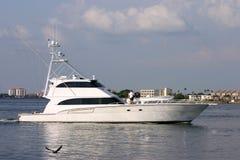 Desporto de barco no estilo Foto de Stock