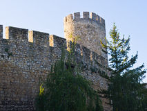 Despot tower at Kalemegdan fortress Royalty Free Stock Photo