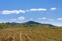 Después de cosechar la paja del trigo Fotos de archivo
