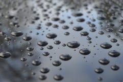 Después de la lluvia Imagen de archivo libre de regalías