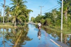Después de la lluvia Imagenes de archivo