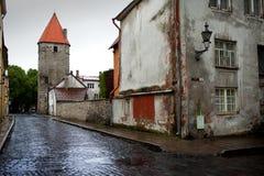 Después de la lluvia Calle y torre de una pared de la ciudad Ciudad vieja Tallinn, Estonia fotografía de archivo