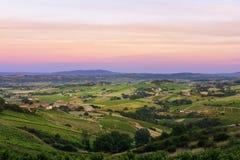 Después de la puesta del sol, viñedos del Beaujolais, Francia Fotografía de archivo libre de regalías