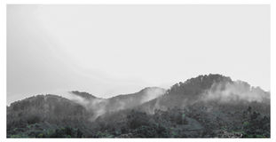 Después de lluvia imagen de archivo