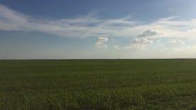 Después de mediodía en el campo verde imagen de archivo