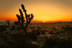 Después de puesta del sol imagenes de archivo