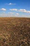Después de tiempo de cosecha Foto de archivo