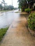 Después del huracán Irma fotos de archivo